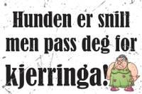 Bilde av Norske